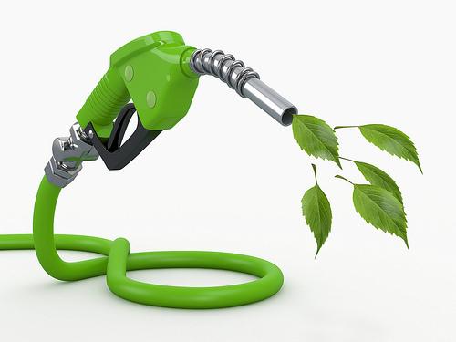 生物天然气能否逆袭?
