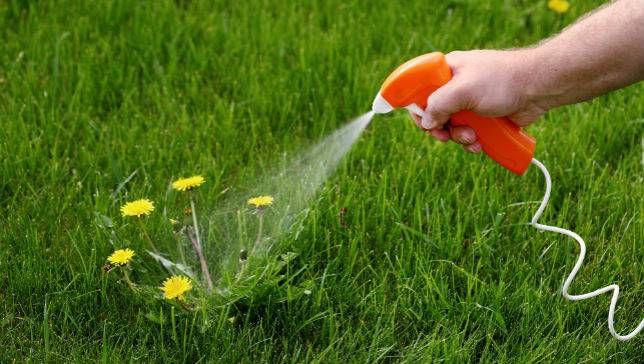 美国拟批准使用含活性成分trifludimoxazin的除草剂