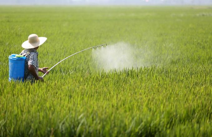 化肥农药使用量负增长 我国农业产地环境逐步改善