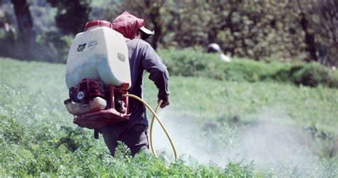 巴西农业部发布2019年优先登记农化产品清单