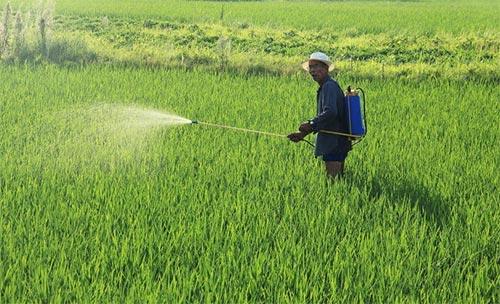 贵州省将开展除草剂专项整治工作 涉草甘膦、草铵膦、敌草快等