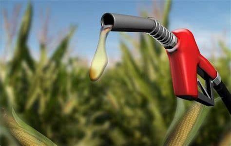 欧盟废除美乙醇反倾销税可能会影响减排