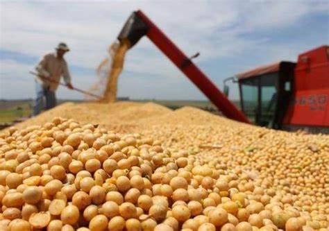 2016/17年度巴西大豆种植者消费杀菌剂产品价值83亿雷亚尔